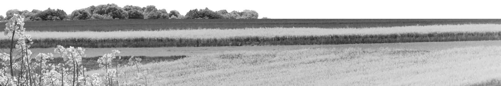 Oferta Dolnośląskiego Ośrodka Doradztwa Rolniczego