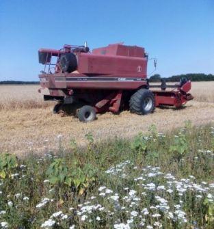 Koszenie zbóż, kukurydzy, roślin strączkowych i oleistych